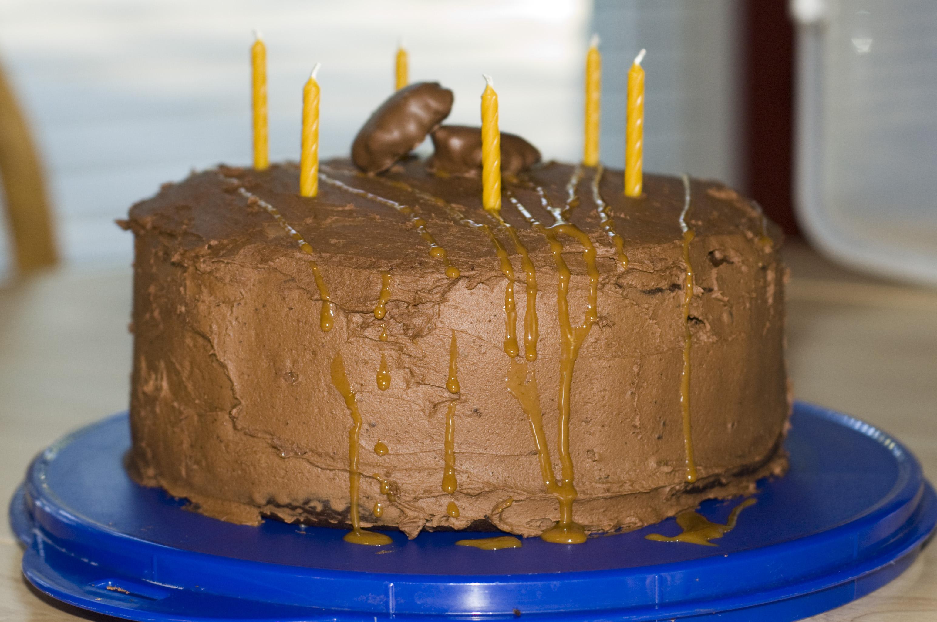 Turtle Cake_1