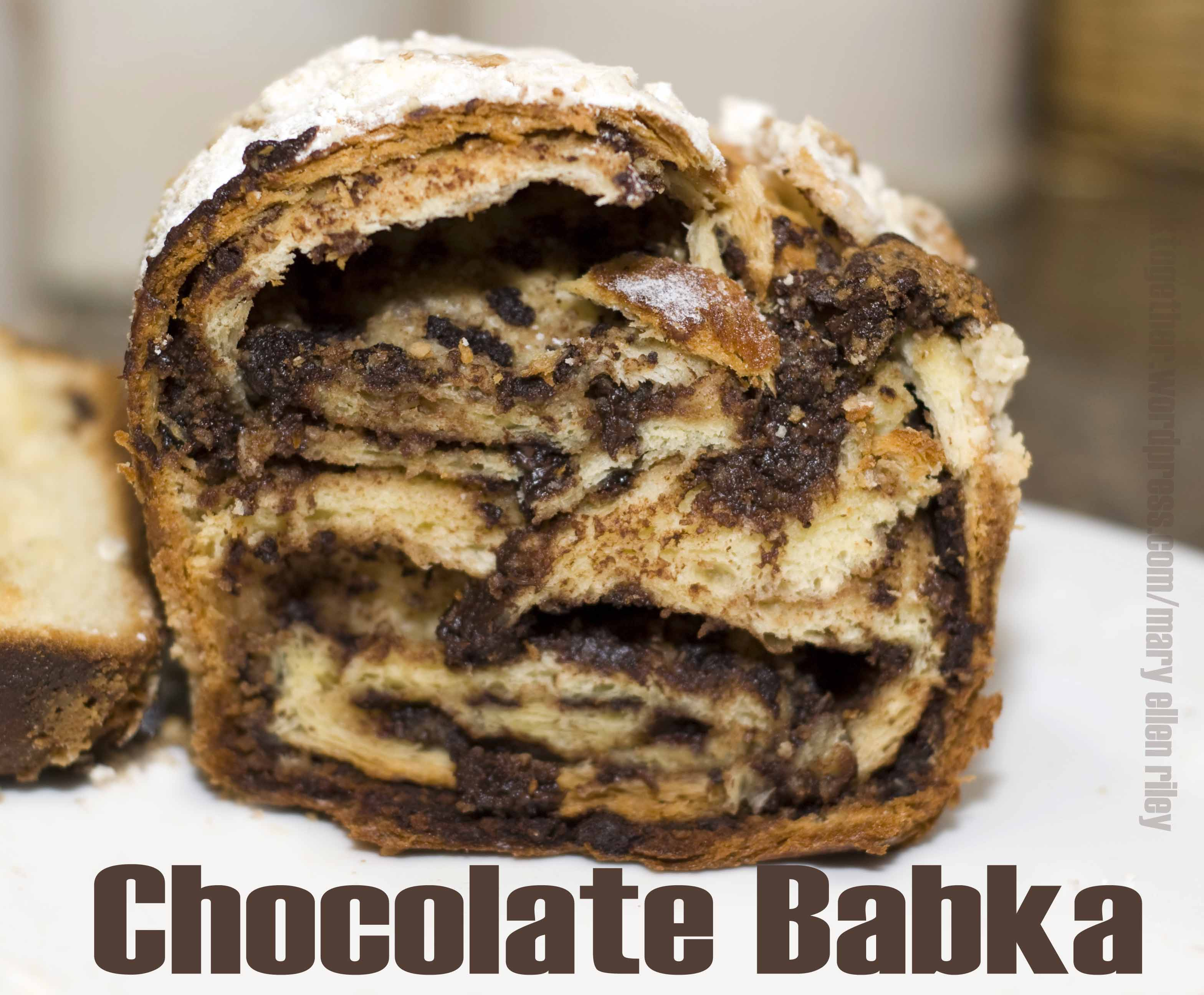 Chocolate Babka_3CR